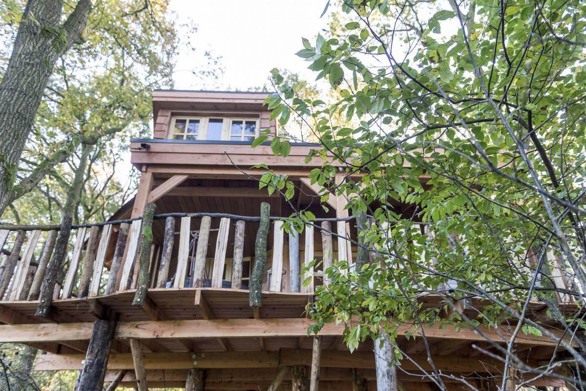 Vakantiepark Westerbergen boomhut exterieur 2